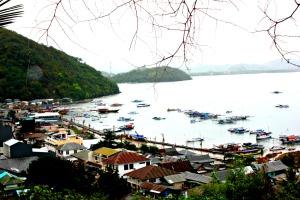 Flores Harbour