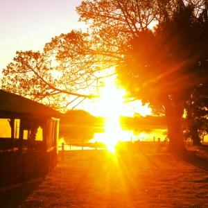 sunset pantanal 2