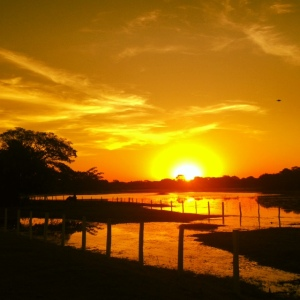 sunset pantanal