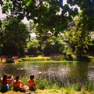 Festival, lake