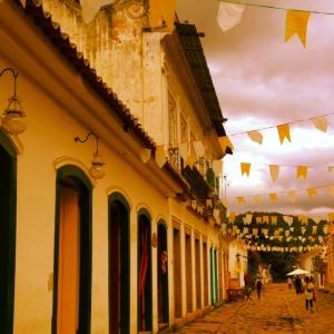 Bunting_Paraty_Brazil