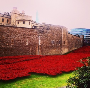 Tower_poppies_London